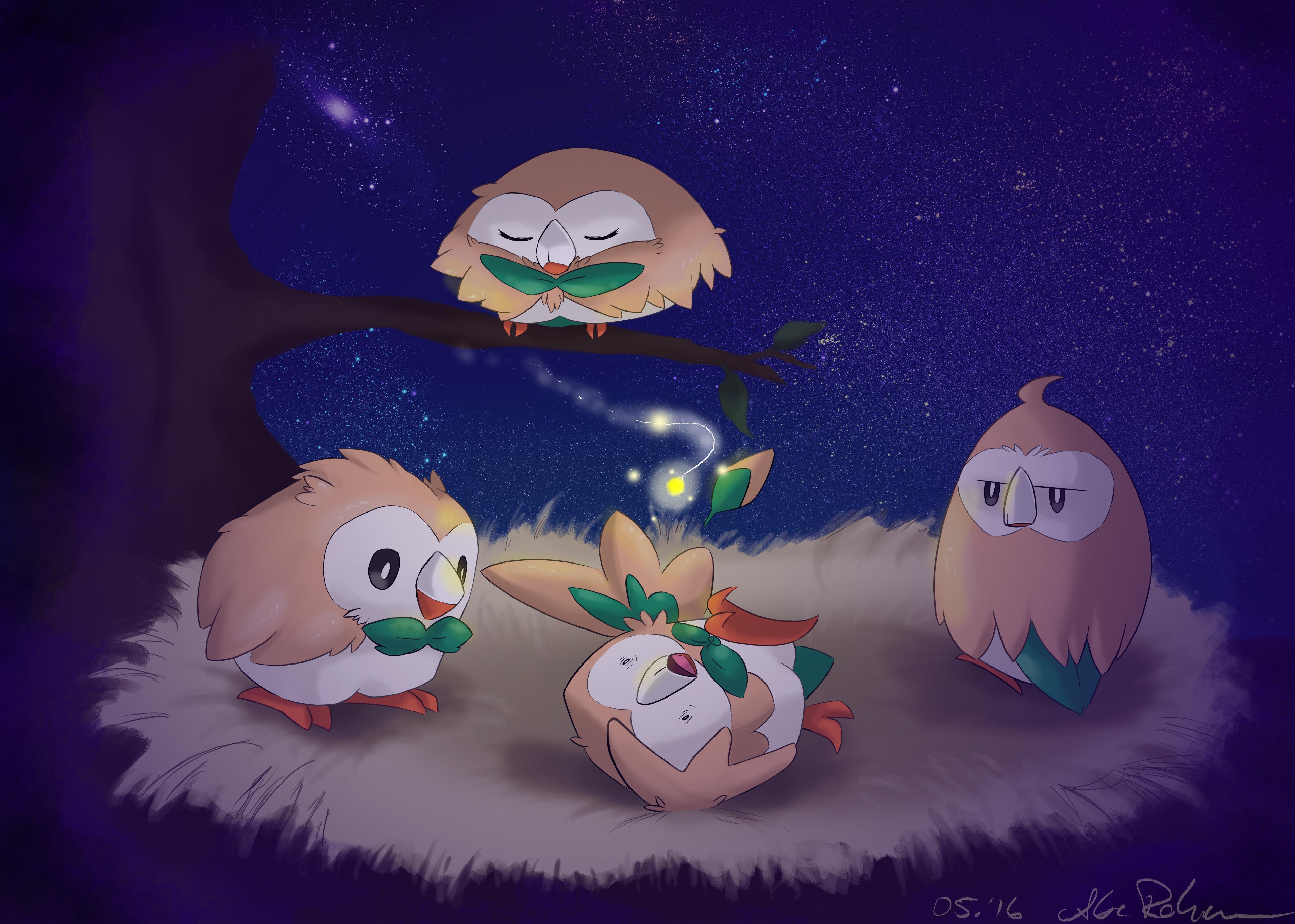 Bauz Nest